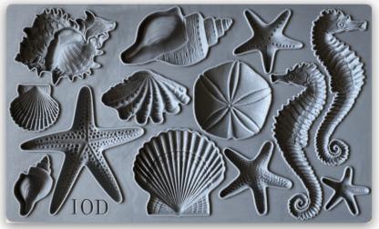 Iron orchid designs Sea Shells mal
