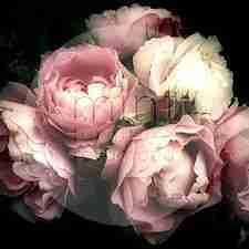 MINT decoupage paper Moody Florals