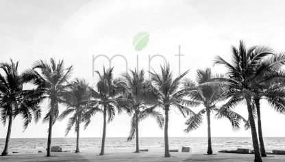 MINT decoupage paper Palm Trees