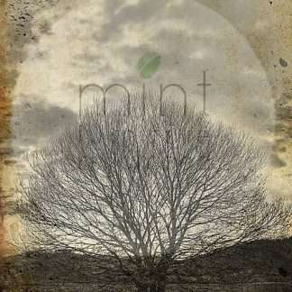 Mint decoupage paper Lone Sepia Tree