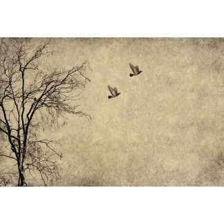 Mint by Michelle decoupage paper Flying Birds